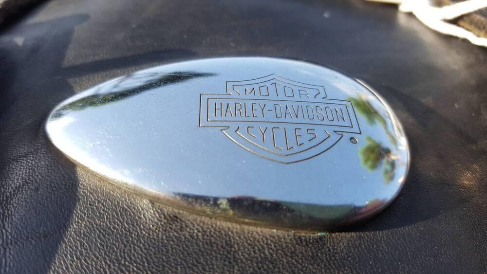 Borsa Softail Harley-Davidson (2)