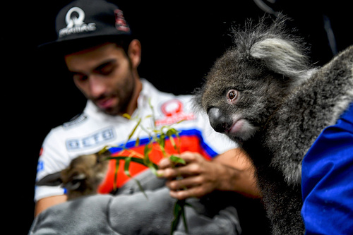 Gallery - Le foto più belle del GP d'Australia 2017