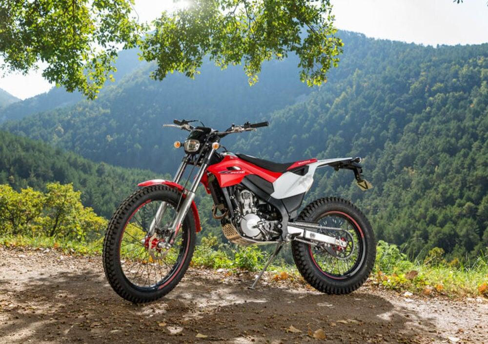 Montesa 4 Ride 260 (2016 - 17) (4)