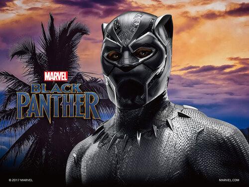 HJC RPHA70 Black Panther (3)