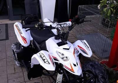 Altre moto o tipologie Quad - Annuncio 7273148