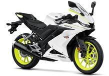 Yamaha YZF-R 125 2019: foto e dati