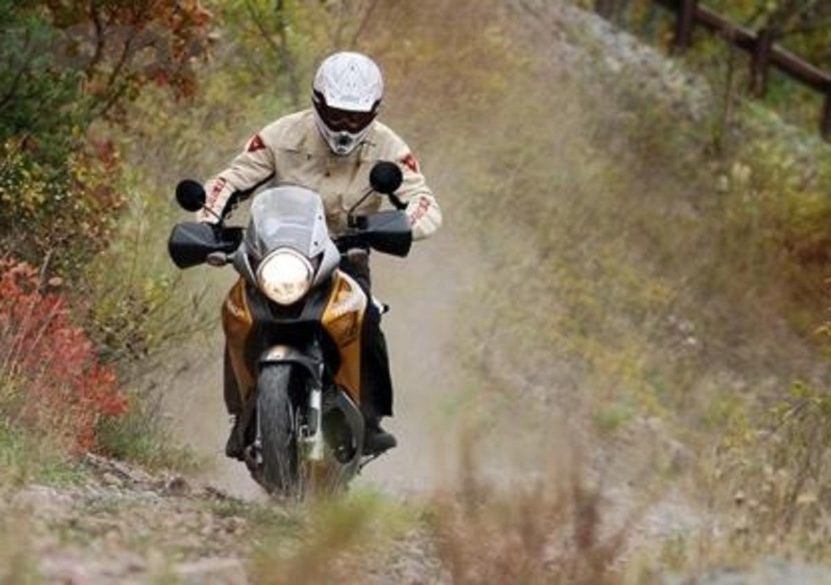 COPPIA SOFFIETTI FORCELLA MOTO IN GOMMA 32 DENTI COLORE BLU HONDA XL 600