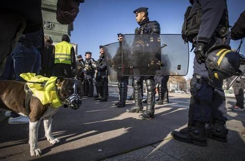"""Francia nel caos per il caro Diesel: chi sono i """"gilet gialli"""" (7)"""