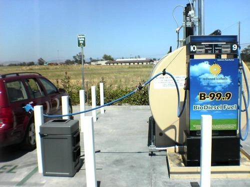 Motori ibridi elettrici e benzina, Moda al termine: col nuovo biodiesel ai funghi