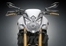 Kit Rizoma per Yamaha FZ8