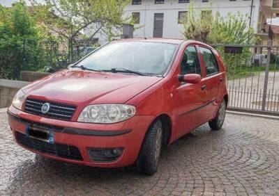 Fiat Punto 1.3 Multijet 16V 5 porte Actual del 2004 usata a Aisone