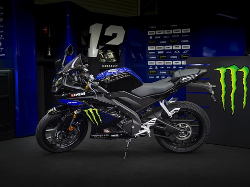Yamaha YZF-R125 Monster Energy 2019: MotoGP replica (5)