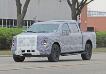 Ford F-150: verso la futura generazione [Foto spia]