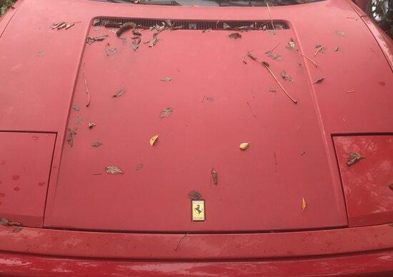 Ferrari, abbandonate in un campo 11 auto storiche