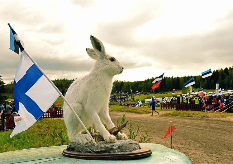Rally di Finlandia 2019: le foto più belle