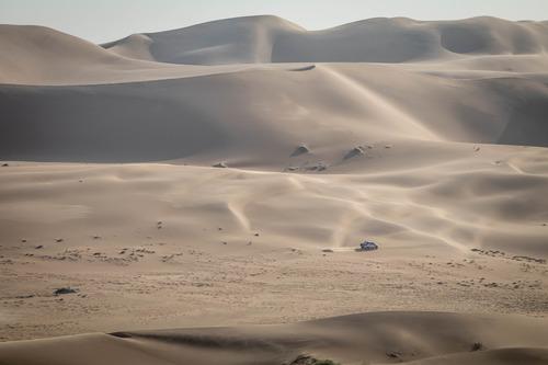 Dakar 2020: Alonso completa i test con Toyota (6)