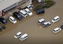 Giappone: il tifone Hagibis sta mettendo in ginocchio anche l'industria dell'auto
