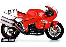 Harley Davidson: in arrivo una sportiva?