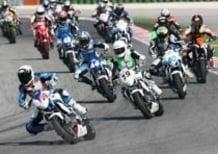 Misano, Suzuki Gladius Cup: en plein di Segoni