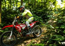 Beta Enduro 2021 TEST:125 e 300 2 tempi, 430 4 tempi. Orgoglio italiano