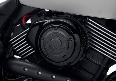 Fregio filtro aria Willie G per 750 P/n 29400343 Harley-Davidson - Annuncio 8184905