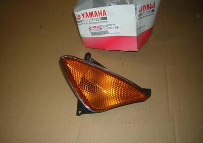 lampeggiatore ant destro Yamaha Tmax 500 2005 - Annuncio 8259345
