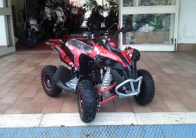 Altre moto o tipologie Quad - Annuncio 8259969