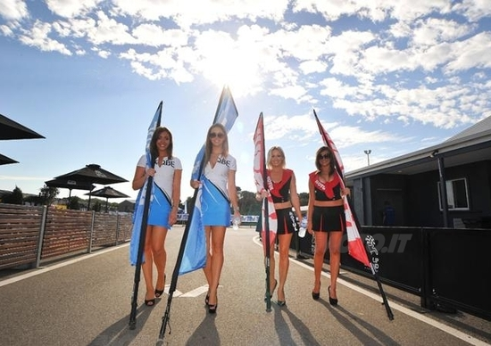 Le ragazze più belle del GP di Phillip Island