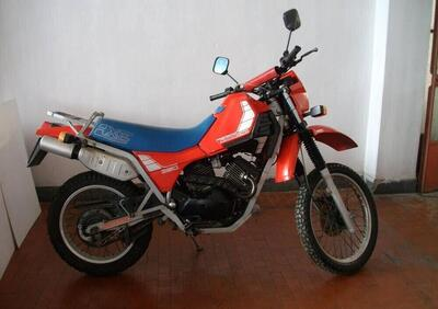 Morini Canguro 350 (1982 - 90) - Annuncio 8317894