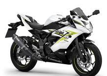 Kawasaki Z125 e Ninja 125. Aggiornamento colori 2022