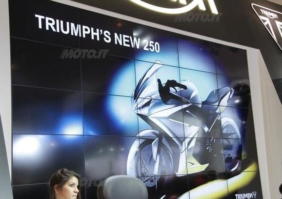 Triumph congela il progetto 250
