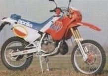 Le Belle e Possibili di Moto.it: Aprilia Tuareg Rally