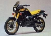 Le Belle e Possibili di Moto.it: Yamaha TDR 250