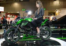 Kawasaki Z300 e Z250SL