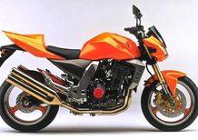Kawasaki Z 1000 (2003 - 06)