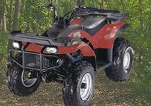 E-Ton Yukon 150