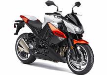 Kawasaki Z 1000 (2010 - 13)