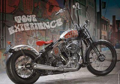 Headbanger Gypsy Soul