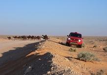 Fiat Panda Cross Dakar 2007