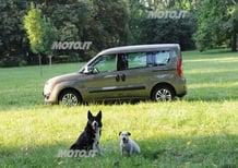 Opel Combo Pet Lover Edition, in vacanza con Fido