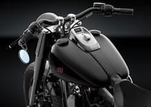Rizoma per Harley-Davidson Softail Slim