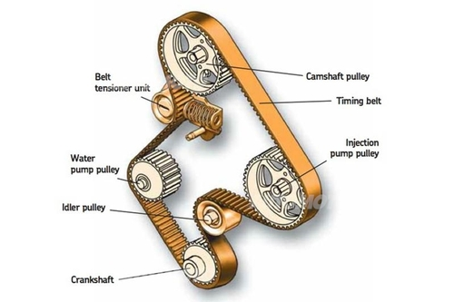 Le cinghie dentate vengono spesso impiegate per azionare dispositivi come la pompa dell'acqua e, nei diesel, la pompa di iniezione.  Belt tensioner unit  = gruppo tenditore Camshaft pulley = puleggia dell'albero a camme Timing belt = cinghia dentata Injection pump pulley = puleggia della pompa di iniezione Idler pulley = rullo di guida Crankshaft  =  albero a gomiti Water pump pulley = puleggia della pompa dell'acqua