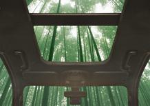 Idea Ford: il bambù al posto della plastica [Video]